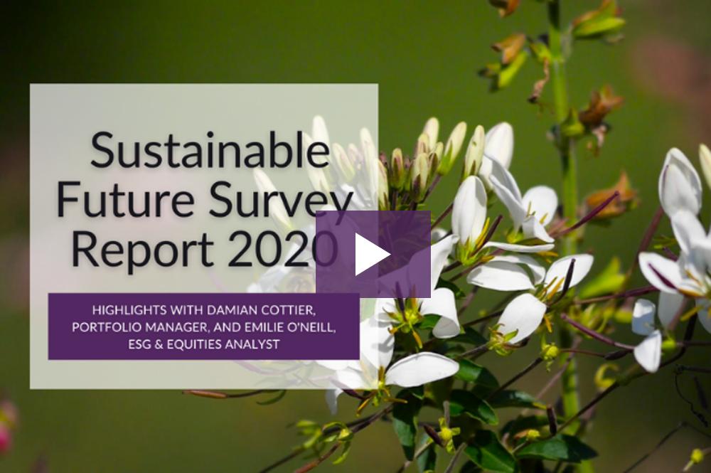 SFT Survey Report 2020 highlights